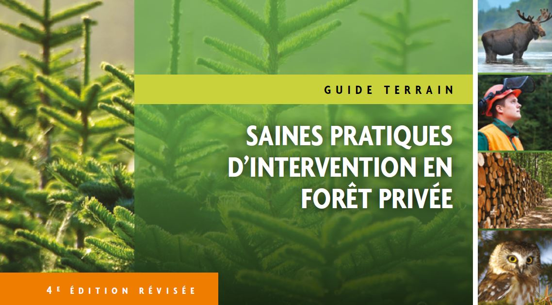 Guide terrain: saines pratiques d'intervention en forêt privée : Guide terrain: saines pratiques d'intervention en forêt privée